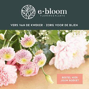 Bloemen rechtstreeks van de kweken - eerlijke prijs en de hoogste kwaliteit en duurzaam - Lokale Steekproducten - www.Vleeskopenbijdeboer.nl