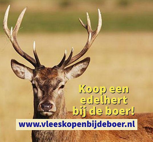 Koop een edelhert direct bij de boer - koopeenedelhert.nl - www.vleeskopenbijdeboer.nl