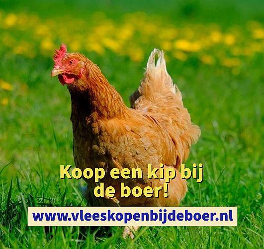 Koop een kip direct bij de boer - kippenvlees pakket - koopeenkip.nl - www.vleeskopenbijdeboer.nl