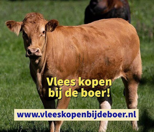 Vlees kopen bij de boer - koopeenkoe.nl - www.vleeskopenbijdeboer.nl