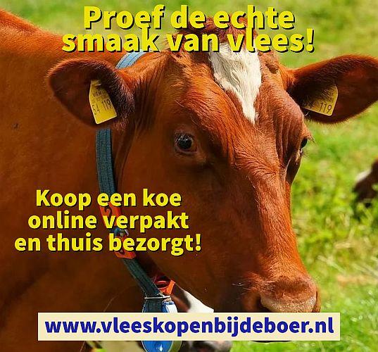 Koop een koe online verpakt en thuis bezorgt - www.Vleeskopenbijdeboer.nl